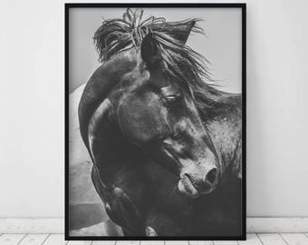 Horse print • Horse photography Horse photo Horse prints Horse photography Black and white Horse printable Black and white horse print Horse