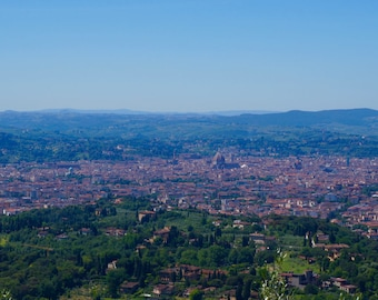 Florence (city from above) print