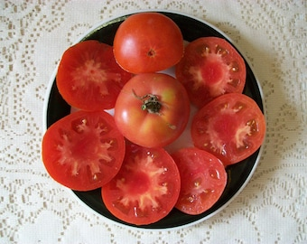 Heirloom Tomato- TROPI-RED- extremely rare- 70 day red Determinate 25 seeds per pack