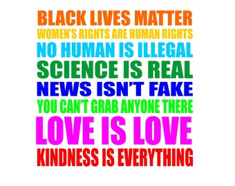 Kindness is everything decal, black lives matter, women's rights are human rights, no human is illegal, love is love decal