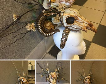 RAM HEAD Aries, golden headdress COSPLAY, Renaissance Pagan Ceremonial head dress w/ real golden iridescent peacock feathers gold leaf