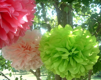 12 Pom poms, Paper poms, pom pom, Tissue paper poms. Pick your colors