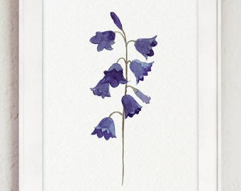 Bluebell Watercolor Painting, Indigo Purple Blue Flowers Floral Art Print, Bluebells Plant Minimalist Canvas Poster, Bluebelle Flower Decor