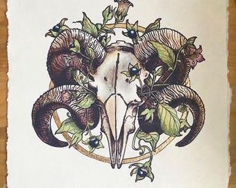 Ram skull and belladonna digital print, ink and marker illustration, gold leaf