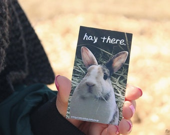 hay there magnet