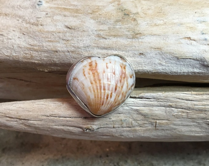 Handmade Fine Silver (.99) Ring with Bezel Heart Shaped Cockle Shell Size 6
