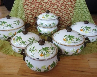 Vintage Fissler Asta Geranium  Enamelware  Cookware Set of 13 pieces Very good   China Galore no damage