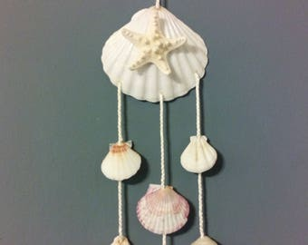Seashell Mobile