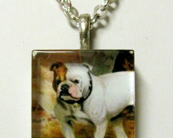 Brown and white bulldog pendant and chain - DGP01-091