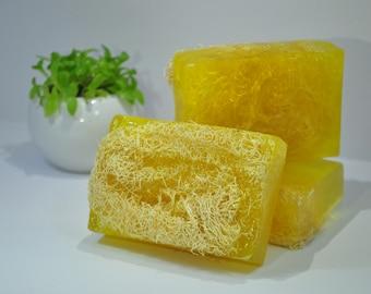 Homemade Loofah Soap and Scrub