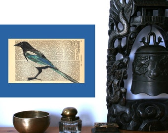 Magpie Art Print on Antique 1896 Dictionary Book Page