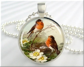 Red Robin Necklace, Bird Jewelry, Red Breasted Robin Pendant, Nesting Birds Resin Charm, Gift Under 20, Bird Lover Gift (675RS)