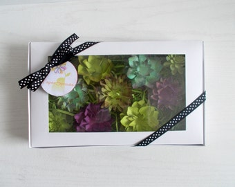 Gardening Gift Set - Plantable Seed Paper Succulents - Eco Friendly Hand Inked Seeded Paper Embedded With Flower Seeds - Unique Garden Set