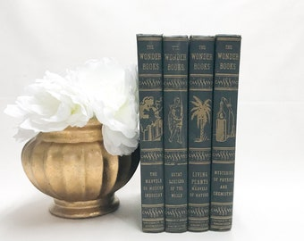 Dark Green Decorative Vintage Books, Shelf Decor
