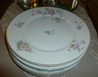 Lovely T. K. Thuny Czechoslovakian Dinner Plates With Floral Motif / Set Of 6 / Mid Century