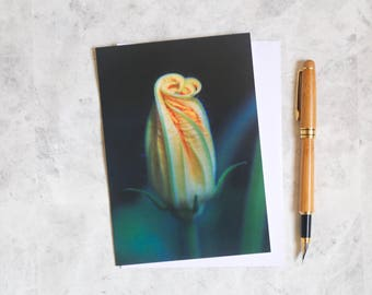 Courgette flower card | birthday card | greetings card | photo print | nature photo | card for her | card for gardener | yellow