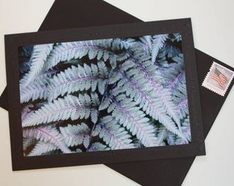 Fern Photo Mount Greeting Card