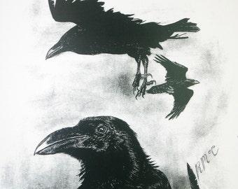 Signed Wildlife Print - The Raven