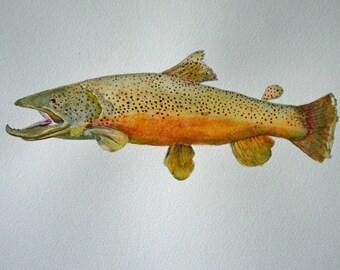 fish painting trout art original watercolor fine art painting watercolor cabin art rustic decor trout painting original framed painting