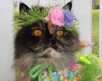 NEW - Floral Headband for Pet - Wedding Bridal - 2 to 20 lb dog or cat
