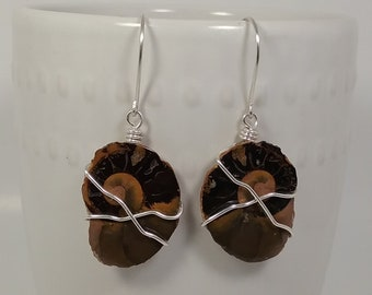 Fossilized Ammonite Earrings .930 Argentium Silver Wire and Hooks