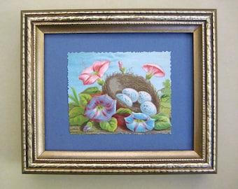 Framed Birds Nest Eggs Vintage Print Morning Glories Woodland Decor Natural Home Victorian Scrapbook Card