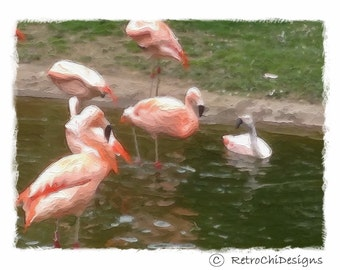 Atomic * Flamingo's * Note Cards 5 Pack