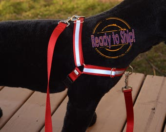 Red Reflective Dual-Attach No-Pull Harness™, front attach, back attach, training harness - XXL - Ready to Ship