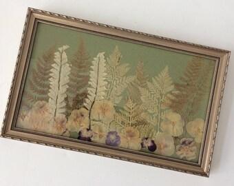 vintage pressed flowers & ferns wall art