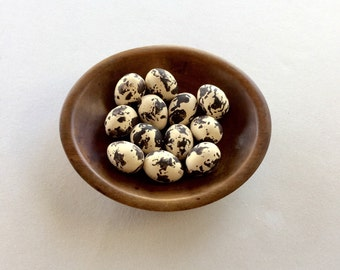 Set of 12 Brown and Cream Speckeled Bird Eggs