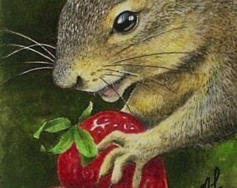 Wildlife Squirrel Miniature Art by Melody Lea Lamb ACEO Print