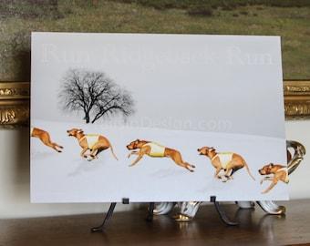 Rhodesian Ridgeback Winter Run Art
