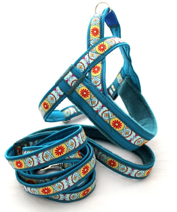 Norway Harness With Leash For Set Elegant Pattern For Dog