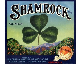 Shamrock California Orange Crate Label