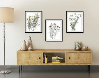 Wattles Chives and Parsley Prints Herbs Wall Art Set of 3 Watercolor Botanical Prints Living Room Wall Art Set Dining Room Wall Decor : art for living room wall - www.pureclipart.com
