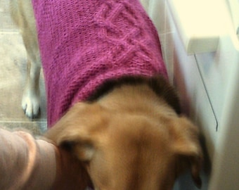 Celtic Dog Sweater Coat, hand knit, with Aran cables.