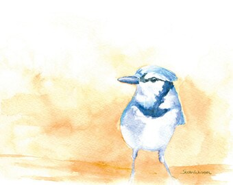 Bluejay Watercolor - 10 x 8 - Giclee Reproduction - 11 x 8.5 - Fine Art Print Bird Art - Watercolor Painting