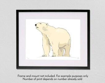 Polar Bear - Limited Edition - A3 fine art giclée print
