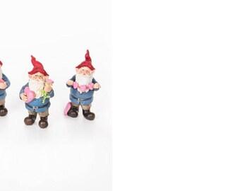 Miniature Garden Gnome for Fairy Garden,Miniature Garden, Train scene , dior etc.