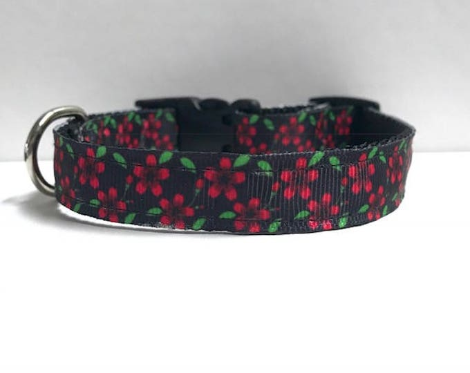 """5/8"""" Black and pink green floral collar"""