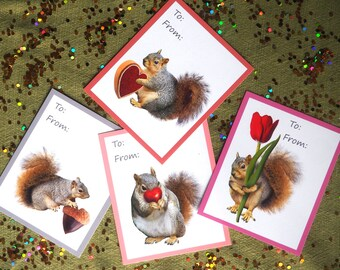 Squirrels Printable School Valentine Cards