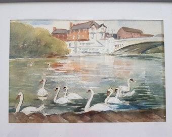 Amateur watercolour - Swans at Caversham