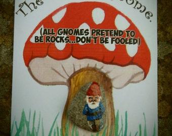 Pocket Gnome.