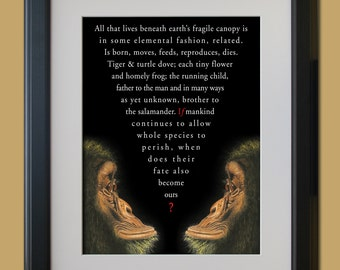 All that lives beneath earth's fragile canopy. Limited editon print illustrating a powerful piece of copywriting.(UNFRAMED)