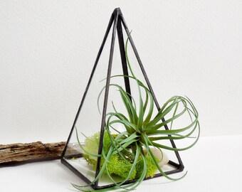 Terrarium Pyramid Terrarium Stained Glass Geometric Plant Holder