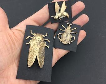 Cicada Pin, Insect Pin, Insect Brooch, Bug Pin, Bug Jewelry, Insect Jewelry, Cicada Jewelry, Dog Day Cicada, Cicada Brooch, Cicada Jewelry