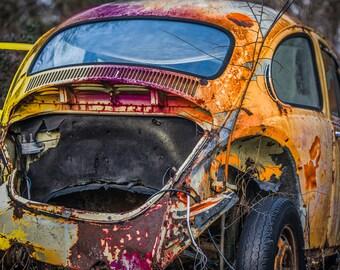 VW Bug Color Explosion
