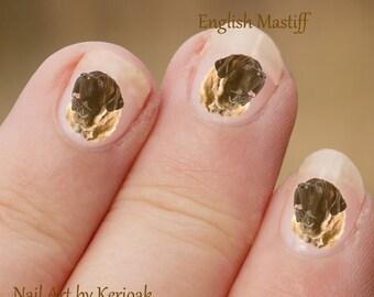 Engelse Mastiff Nail Art, hond Nail Art Stickers, Engelse Mastiff hond Nail Art Stickers, vingernagel Stickers, Mastiff overdrukplaatjes fotograferen
