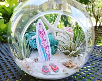 """Surfboard Beach Terrarium Kit ~ 6"""" Medium Air Plant Terrarium Kit ~ Coastal Living Beach Decor ~ Beach Decor ~ Flip Flops ~ Gift Idea"""