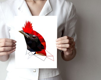 Geometric print, Bird Artwork, bird print, small bird, red black bird, wall art, modern poster, minimal art, bird poster B04Helmeted manakin